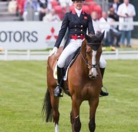 407 by Bit of Britain – Max & Joe: Houghton Hall Winner Nicola Wilson & TD Andy Bowles