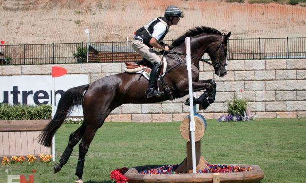 421 by Bit of Britain – Joe & Max – Burghley Winner Chris Burton and EquiRatings Numbers, Wood and DePorter on AEC's