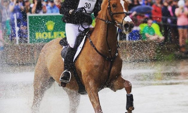 459 by Bit of Britain – Max & Joe – Caroline Martin at Houghton International, Sarah Murphy Takes Devon Arena Event
