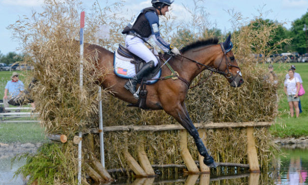 484 by Bit of Britain –  Sara Murphy on Grooms Award, David O'Connor on FEI Rule Changes, Brannigan Lady Rider of the Year